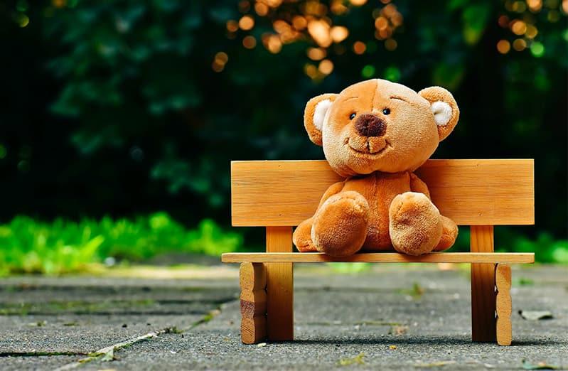 teddy bear on bench