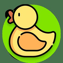 duck illustration