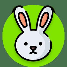 rabbit names icon